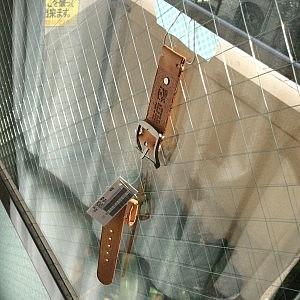 とりあえず窓に吊るした